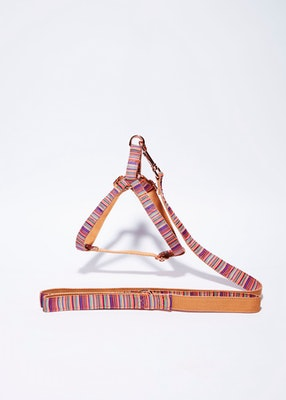 House of Pets Delight 'Summer' Step In Harness Set