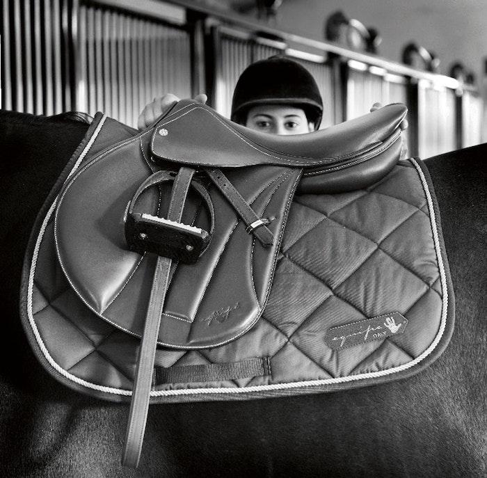 saddle-on-a-horse-jpg