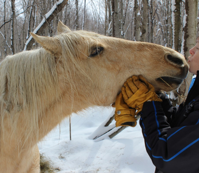 winter_horse_riding_tips_3_480x480-png