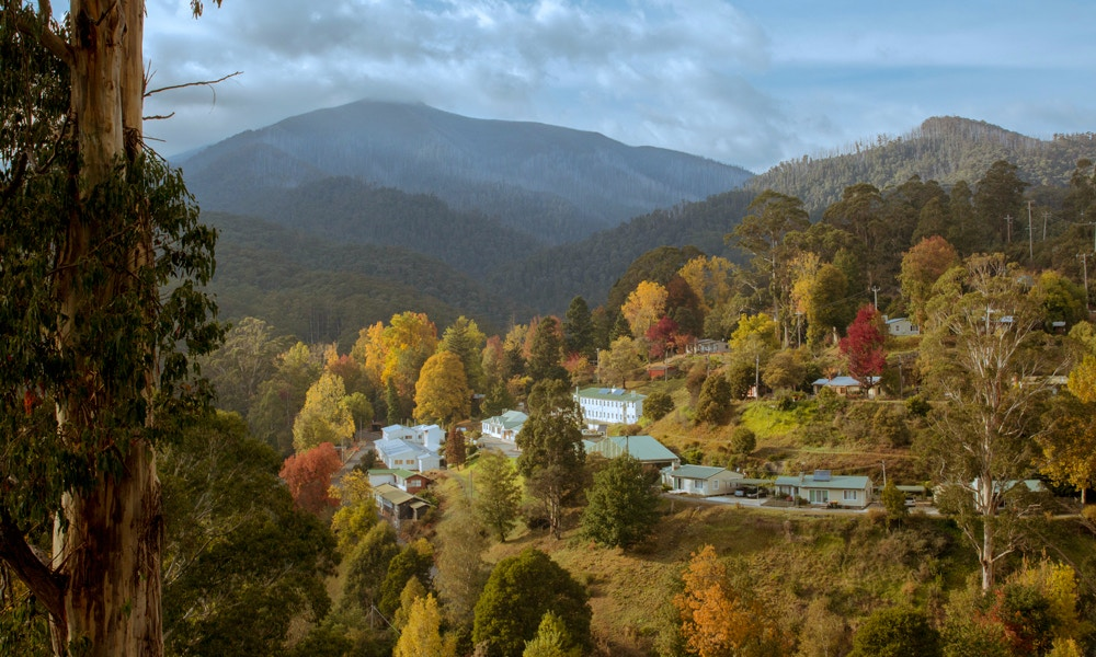 A Weekend in Bright and Mt Beauty - What to Do