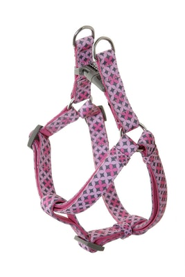 Doog Step In Harness -  Toto (Large Only)