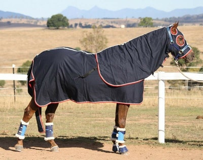 Capriole Equestrian Deluxe Navy Cotton Show Set - Red & White Trim