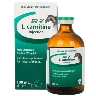 CEVA L-Carnitine Supplement Amino Acid Horses Dogs 100ml