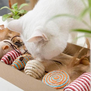 Queenie's Pawprints The PURRfect Set - Eco-friendly Kitty Toy Gift Pack