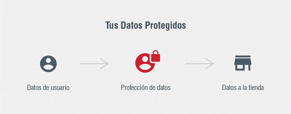 proteccion-de-datos-png