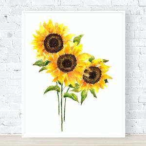 Amazing Sunflowers - Archival Print