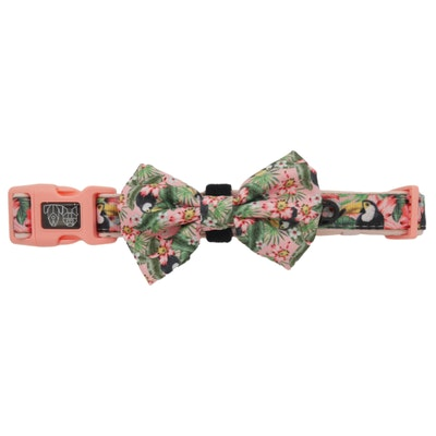 Big & Little Dogs Troppo Toucan Collar & Bow Tie