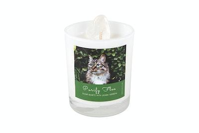 Kitty Kitchen Purify Flea Ritual Candle