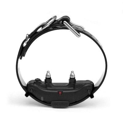 Dogtra ARC™ Dog Remote Training Collar Extra Receiver