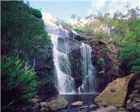 Winter and spring is waterfalls and wildflower time in the Grampians. MacKenzie Falls, courtesy Parks Vic