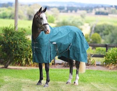 CARIBU Blaze 20oz Lined Canvas Horse Rug