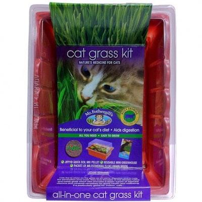 Mr Fothergills Mr Fothergill's Edible Cat Grass