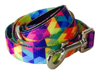VanityPaws Abstract Rainbow - Walking Lead