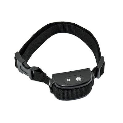eDog Australia Extra Collar for Advanced Hidden Fence Dog Training System