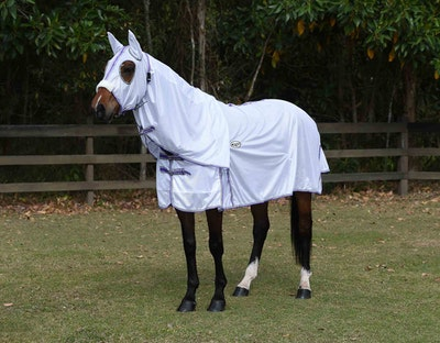 CARIBU Eurolite 140gsm Hooded Mesh Horse Rug