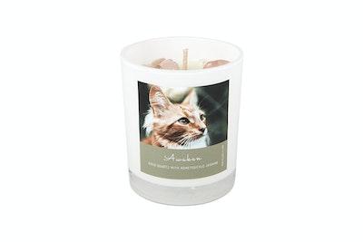 Kitty Kitchen Awaken Feline Ritual Candle