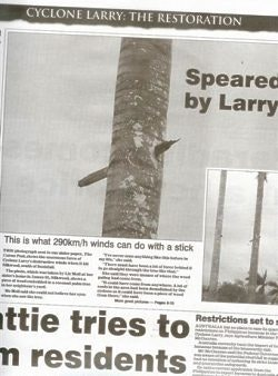 This newspaper picture makes the point about Larry