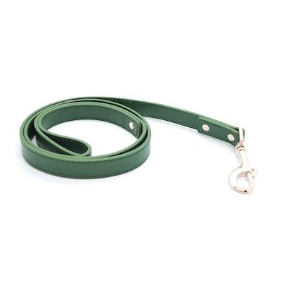 Petzy Green - Premium Pet Lead (Silver)