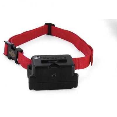 PetSafe® Stubborn Dog Extra Receiver Collar