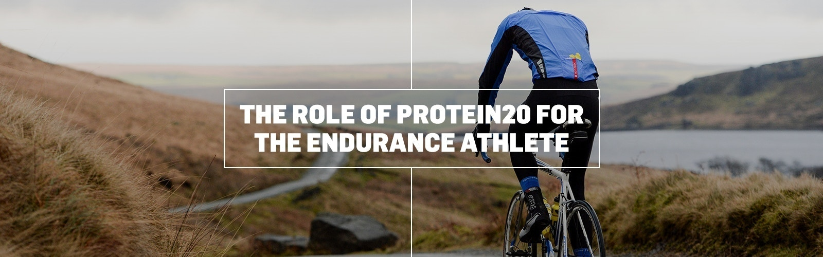 THE ROLE OF PROTEIN FOR THE ENDURANCE ATHLETE
