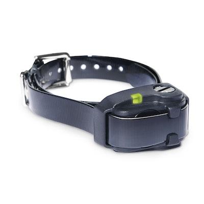 Dogtra YS200 Anti Bark Collar