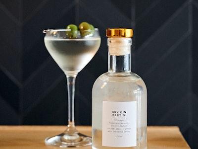 Dry Gin Martini (2 serves)
