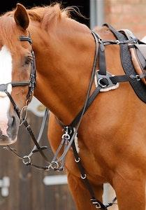 Premier Equine Invorio 5 Point Breastplate