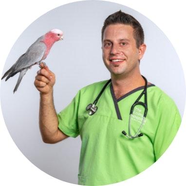 Dr Peter Ricci