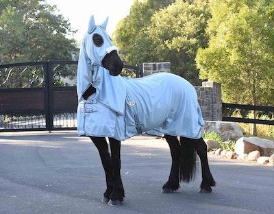 CARIBU XL Gusset Hooded 270gm Horse Rug
