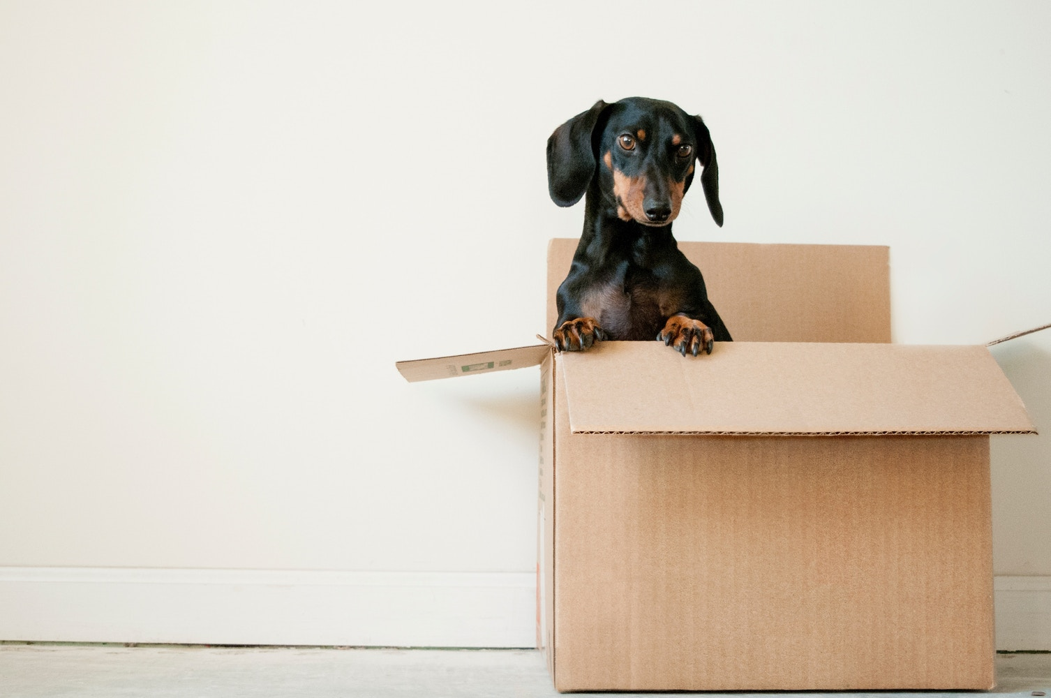 Five Tips to Help You Move Out Sustainably