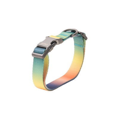 Pidan Collar - Dog - A1