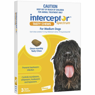 Interceptor Spectrum Tasty Chews Worming Treatment Medium Dog