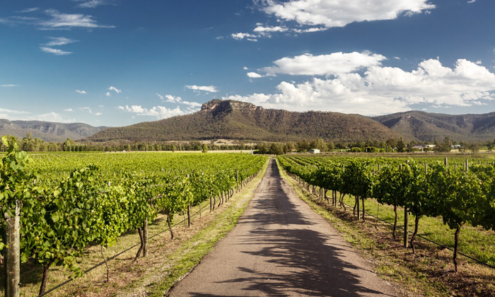 hunter-valley-1-png