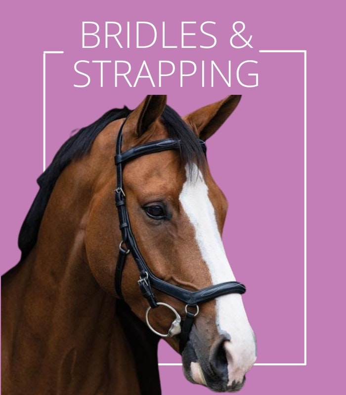 bridles stirrup leathers and martingales