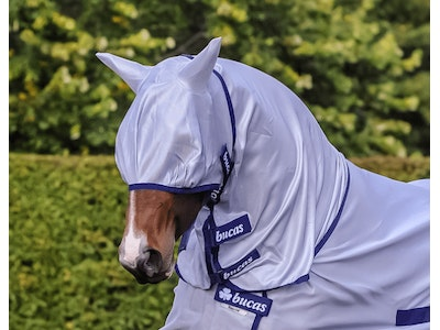 Buzz Off Fly Mask