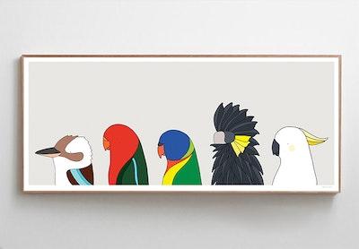 Birds of Sydney
