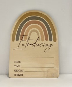 Baby Record Announcement Plaques - Rainbow Series
