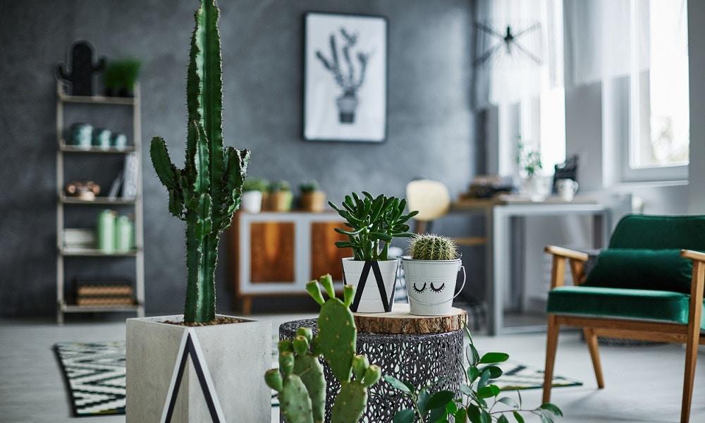 How Interior Design Trends Inspire Stationery Design