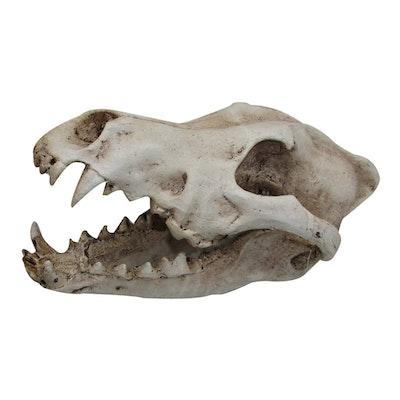 URS Ornament Wolf Skull Reptile Enclosure Accessory