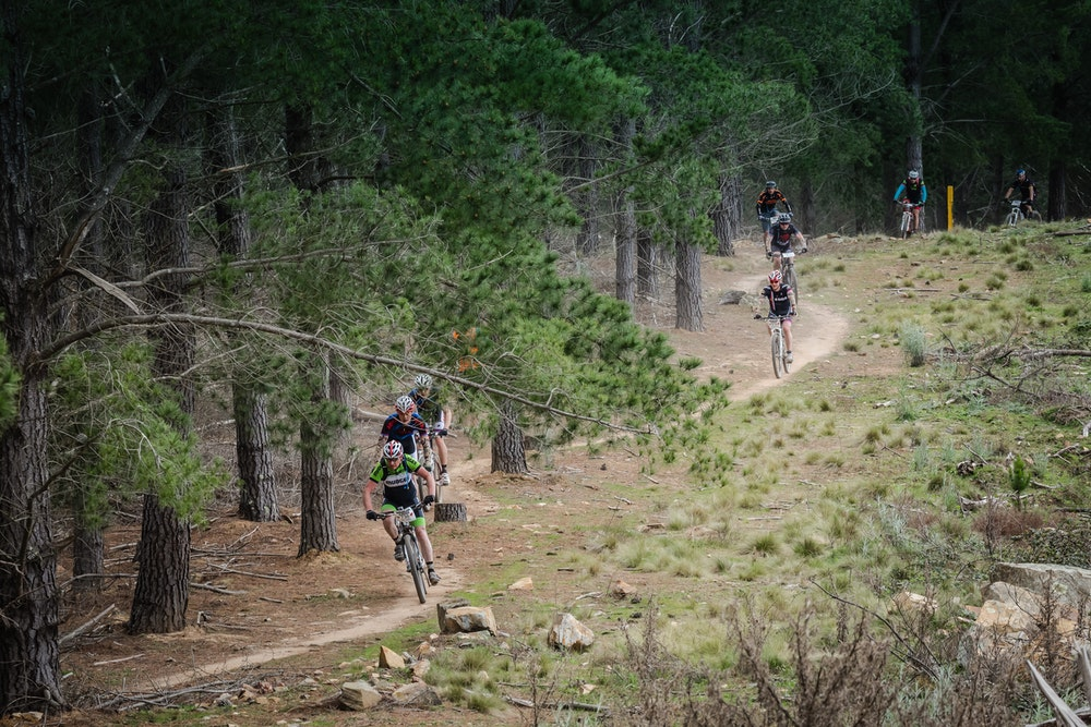riders coming out of woods
