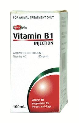 Vitamin B1 100ml    Value Plus