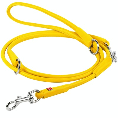 WauDog by the Collar Company WAUDOG GLAMOUR Adjustable Leather Clip Leash Size: width 10mm Length 183cm