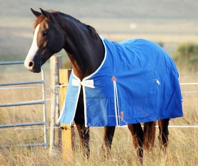 Capriole Equestrian 16oz Unlined Canvas Waterproof Rug.