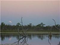 Moonrise and eclipse over Lily Creek lagoon