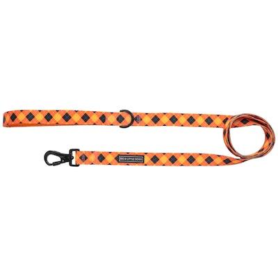 Big & Little Dogs Plaid-tastic Dog Leash