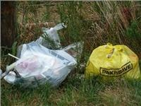Rest area rubbish near Arthurs Pass NZ South Island