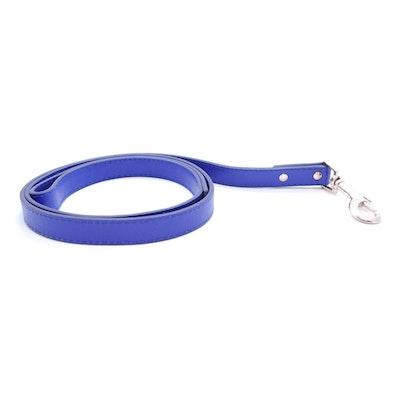 Petzy Blue - Premium Pet Lead (Silver)