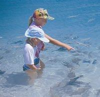 Children feed fish, Coral Bay, courtesy Tourism WA