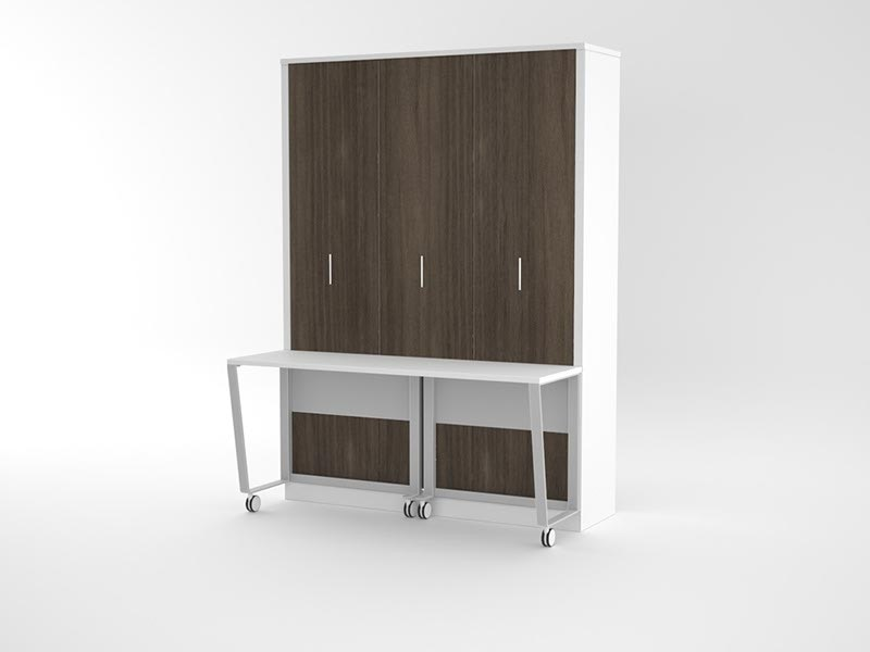 Alexa Portrait Queen With Desk Wall Beds For Sale In