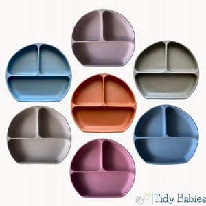 Tidy Babies  Silicone Divided Baby Plate